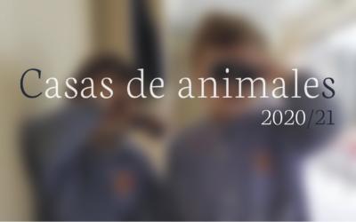 ¡2º de Infantil se adentra en el mundo animal!